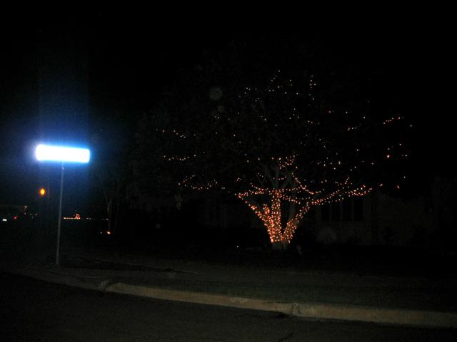 lights1.jpg
